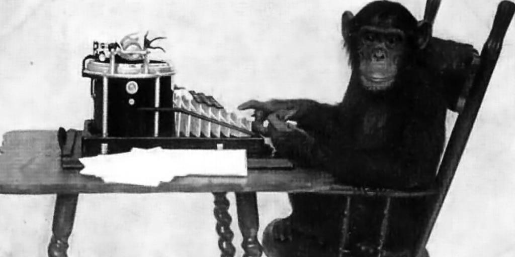 1_monkey